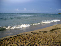 Caribbean sea. Caribbean beach in the afternoon Royalty Free Stock Images