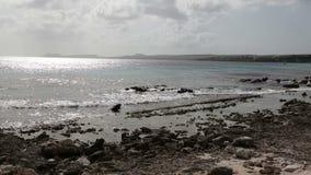 Caribbean sea beach Stock Image