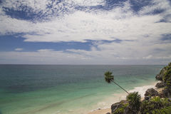 Caribbean Sea with a beach. And a palm, Mexico, Tulum stock image