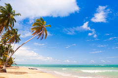 Caribbean sea Royalty Free Stock Images