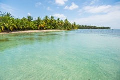 Caribbean sea beach with palm trees in Panama Royalty Free Stock Photography