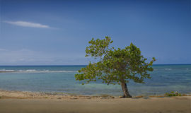 Caribbean Sea. Image of the Caribbean Sea, offshore natural landscape of Cuba, Cuban beach in the small town of Baracoa Stock Image