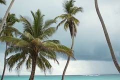 Caribbean Sea. Reefs, dark sky, before a thunderstorm. Caribbean, beaches and ocean. Caribbean Sea. dark sky, before a thunderstorm rain royalty free stock photography