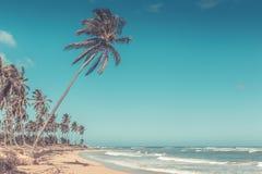 Caribbean sea scenery Royalty Free Stock Image