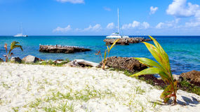 Caribbean sea scenery Royalty Free Stock Images