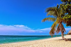 Caribbean sea shore Stock Image