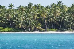 Caribbean sea with turquoise water and palms close to Saona island Stock Photo