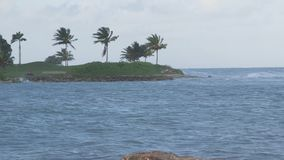 Caribbean Sea waves tropical vacation stock video