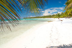 Caribbean sea with white sand on island Saona Stock Photo