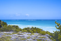 The Caribbean Sea and white wave beach under blue sky, Tulum, Yucatan Peninsula, Mexico, green grass foreground, text copy space Stock Photo