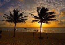 Caribbean sunrise palm trees Riviera Maya. Caribbean sunrise palm trees in Riviera Maya Mayan Mexico Stock Photography