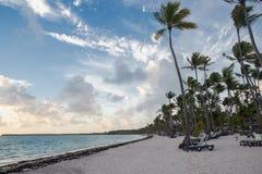 Caribbean Sunrise. On sandy beach with palm trees Stock Photos