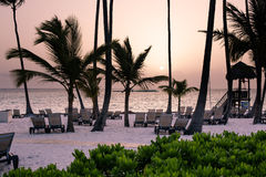 Caribbean Sunrise. On sandy beach with palm trees Royalty Free Stock Photography