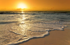 Caribbean sunrise with wave on beach Royalty Free Stock Images