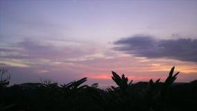Caribbean sunset stock video