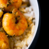 Caribbean tasty curry shrimp prawns and white rice Royalty Free Stock Images