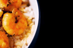 Caribbean tasty curry shrimp prawns and white rice Stock Images