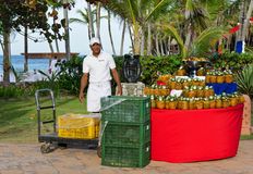 Caribbean tropical pineapples and fruits. At Punta Cana royalty free stock images