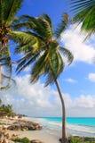 Caribbean Tulum Mexico tropical turquoise beach Royalty Free Stock Photo