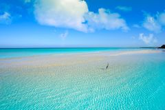 Caribbean turquoise perfect beach Riviera Maya. Caribbean turquoise perfect beach in Riviera Maya of Mexico royalty free stock photo