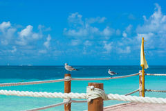 Caribbean vacations. Peer of Caribbean Cancun beach stock image