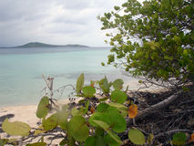 Caribbean view from Beach, Puerto Rico. View from beach off the coast of Puerto Rico Royalty Free Stock Photography