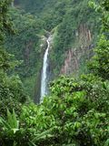 Caribbean waterfall Royalty Free Stock Photo