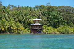 Caribbean waterfront tropical house and vegetation Royalty Free Stock Images