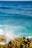 Caribbean Waves coming to Shore Royalty Free Stock Images