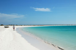 Caribbean white sandy beach Royalty Free Stock Image