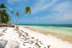 Caribbean wild beach Stock Images