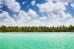 Caribbean wild beach Royalty Free Stock Image