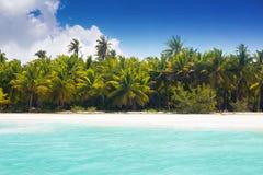 Caribbean wild beach. With palm trees at blue lagoon, Saona Island, Dominican Republic Stock Image