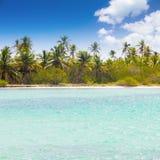 Caribbean wild beach. With palm trees at blue lagoon, Saona Island, Dominican Republic Stock Photo