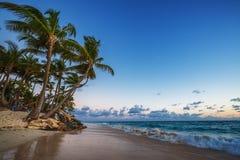 Caribbean wild beach, Punta Cana Royalty Free Stock Image
