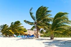 caribbean wybrzeże zdjęcia stock