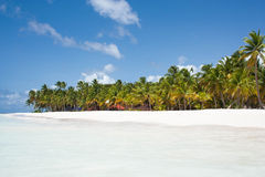 Caribe Image libre de droits