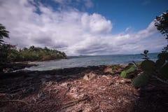 Caribe plaży czasu upływ zbiory