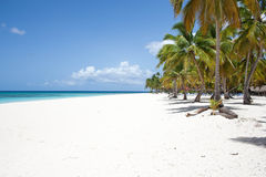 Caribe Stock Images
