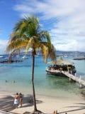 Caribean liv Arkivfoton