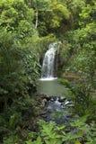 Caribs. Grenada wyspa. Siklawa. Obraz Royalty Free