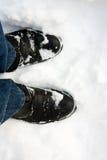 Caricamenti del sistema in neve Fotografie Stock
