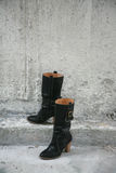 Caricamenti del sistema senza piedi Fotografia Stock