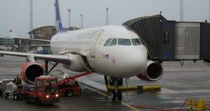 Caricamento del bagaglio in aeroplano stock footage