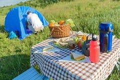 Caricamento della tavola di picnic con gli alimenti di estate Fotografia Stock
