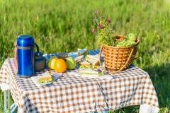Caricamento della tavola di picnic con gli alimenti di estate Fotografie Stock Libere da Diritti