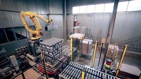 Caricamento robot automatizzato del braccio, prodotti dell'imballaggio Attrezzatura industriale moderna video d archivio