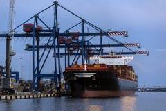 - Caricando una nave porta-container - Klaipeda di spedizione - la Lituania Fotografia Stock Libera da Diritti