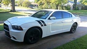 Caricatore di Dodge Immagine Stock