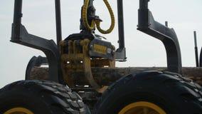 Carichi a macchina di una silvicoltura un camion del ceppo all'atterraggio del sito La macchina della foresta giù registra archivi video